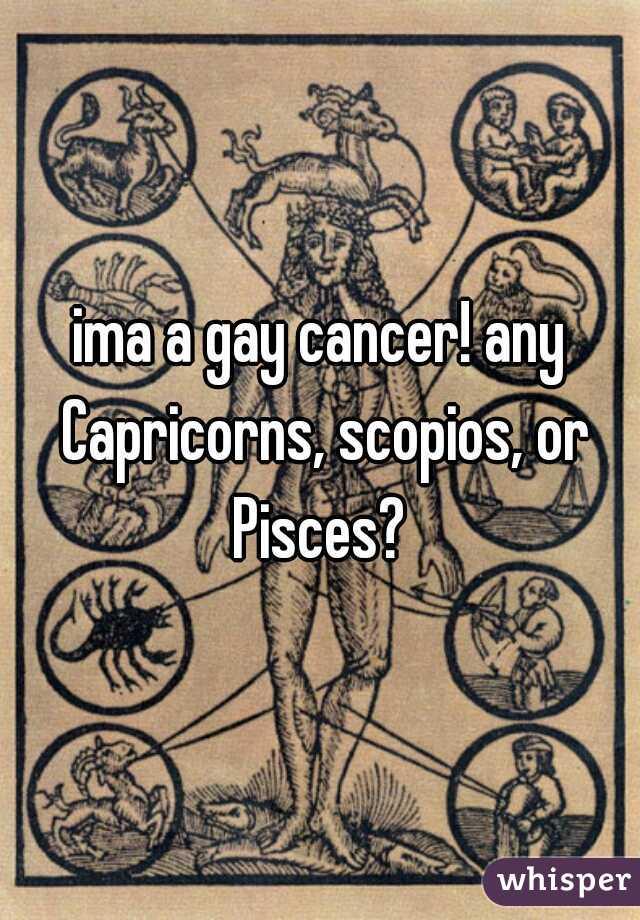 ima a gay cancer! any Capricorns, scopios, or Pisces?