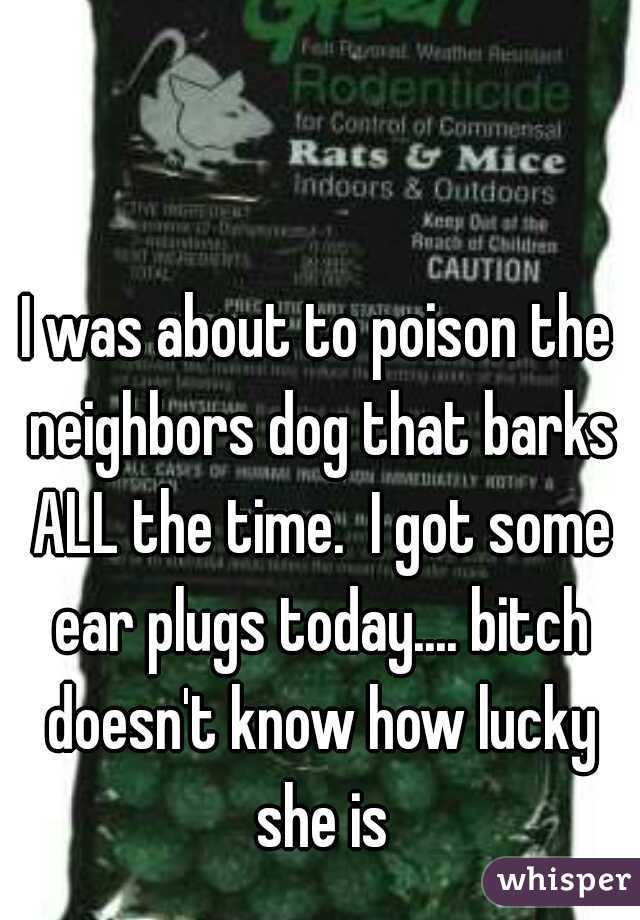 I was about to poison the neighbors dog that barks ALL the time.  I got some ear plugs today.... bitch doesn't know how lucky she is