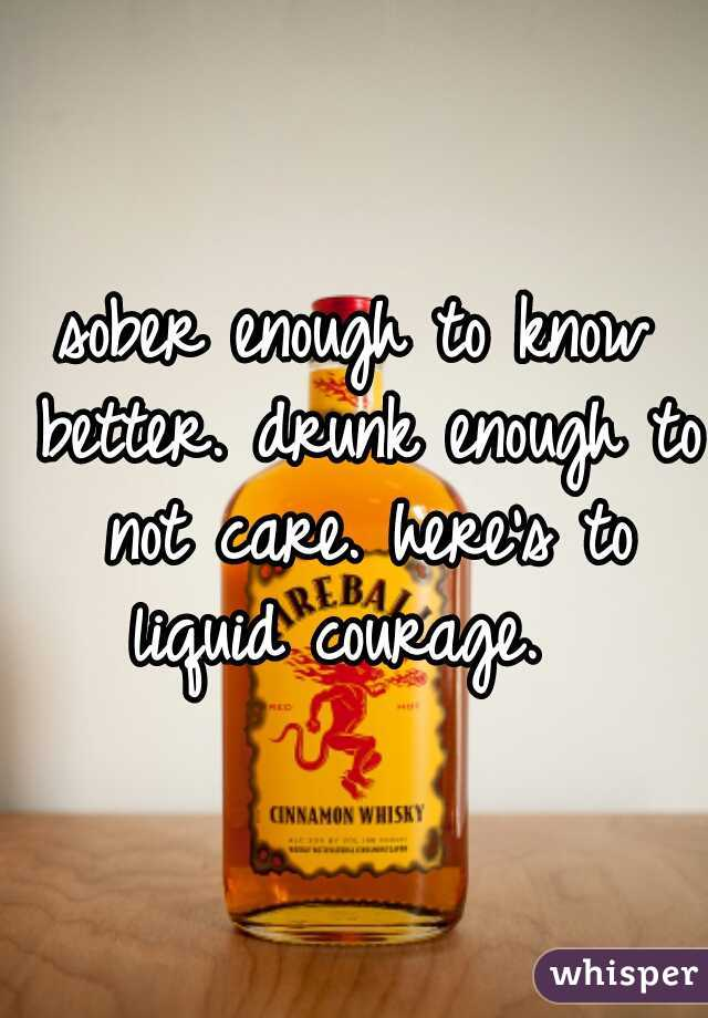 sober enough to know better. drunk enough to not care. here's to liquid courage.