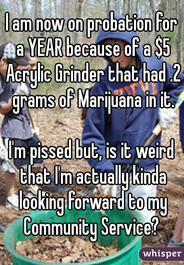 I am now on probation for a YEAR because of a $5 Acrylic Grinder that had .2 grams of Marijuana in it.    I'm pissed but, is it weird that I'm actually kinda looking forward to my Community Service?