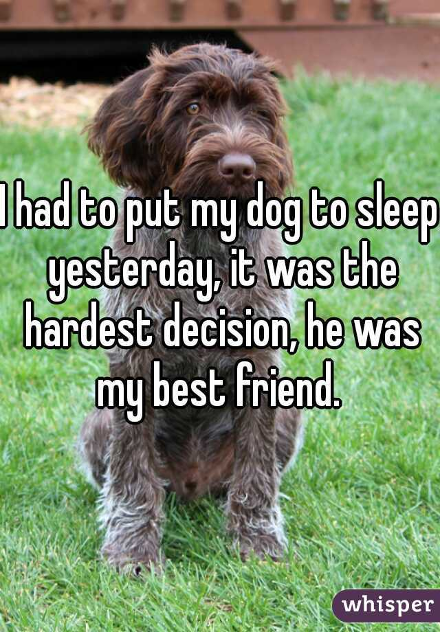 I had to put my dog to sleep yesterday, it was the hardest decision, he was my best friend.