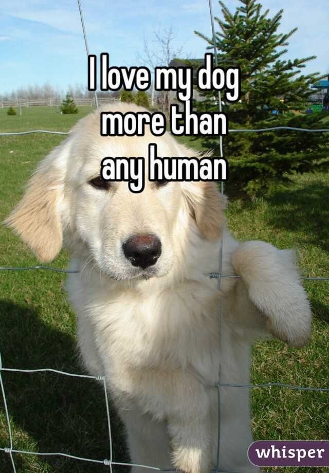 I love my dog more than any human