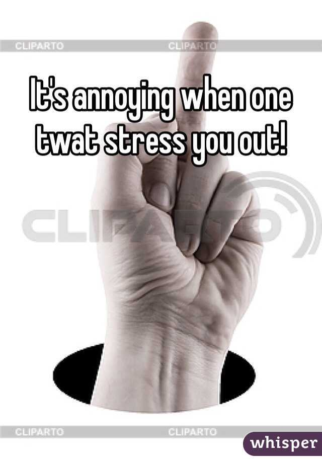 It's annoying when one twat stress you out!