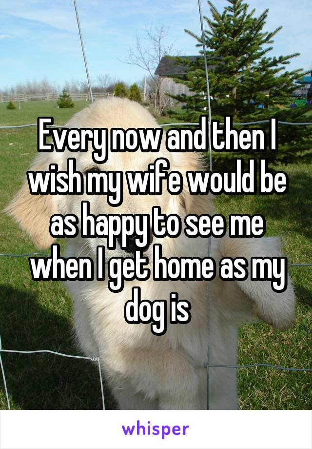 Every now and then I wish my wife would be as happy to see me when I get home as my dog is