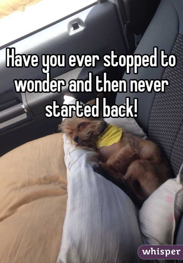 Have you ever stopped to wonder and then never started back!