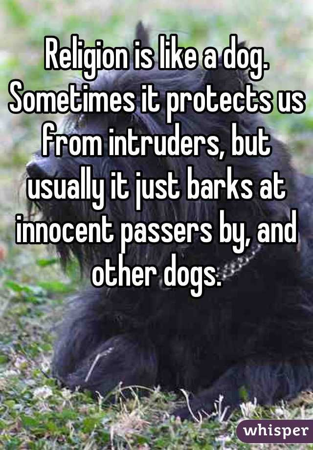 Religion is like a dog. Sometimes it protects us from intruders, but usually it just barks at innocent passers by, and other dogs.