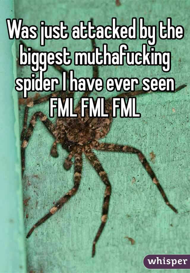 Was just attacked by the biggest muthafucking spider I have ever seen FML FML FML