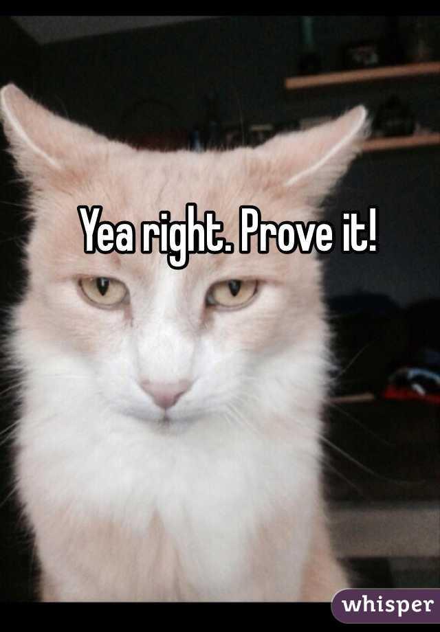 Yea right. Prove it!
