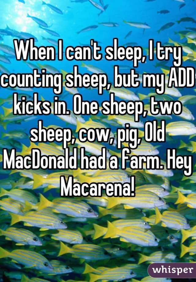 Cow Cant Sleep