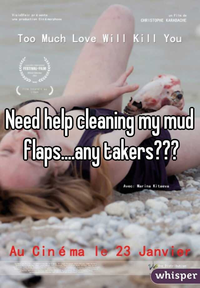 Need help cleaning my mud flaps....any takers???