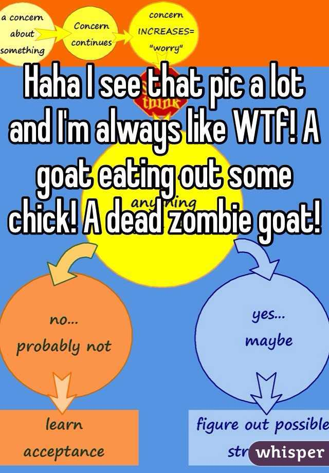 Haha I see that pic a lot and I'm always like WTf! A goat eating out some chick! A dead zombie goat!