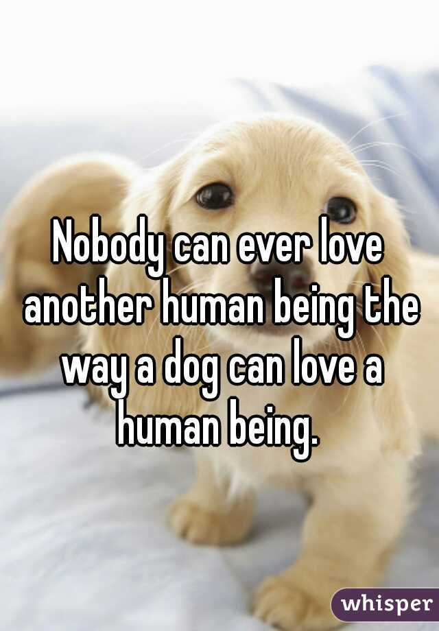 Nobody can ever love another human being the way a dog can love a human being.