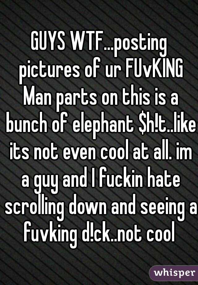 GUYS WTF...posting pictures of ur FUvKING Man parts on this is a bunch of elephant $h!t..like its not even cool at all. im a guy and I fuckin hate scrolling down and seeing a fuvking d!ck..not cool