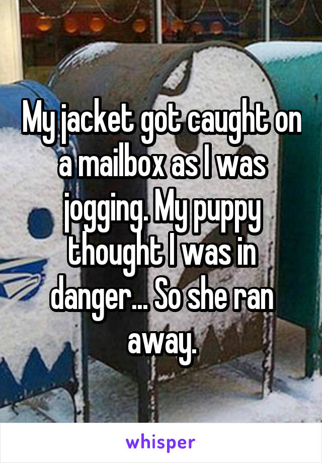 My jacket got caught on a mailbox as I was jogging. My puppy thought I was in danger... So she ran away.