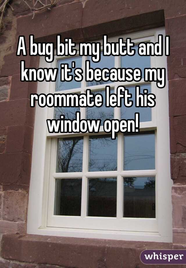 A bug bit my butt and I know it's because my roommate left his window open!