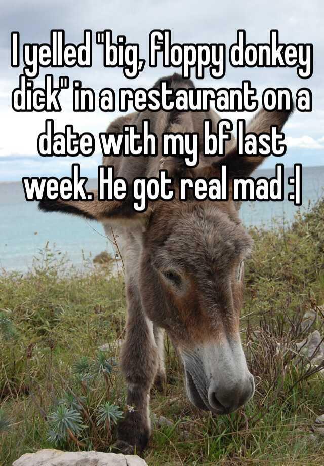 I yelled big, floppy donkey dick in a restaurant on a