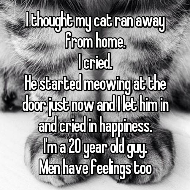 I thought my cat ran away from home. I cried. He started meowing at the door just now and I let him in and cried in happiness. I'm a 20 year old guy. Men have feelings too