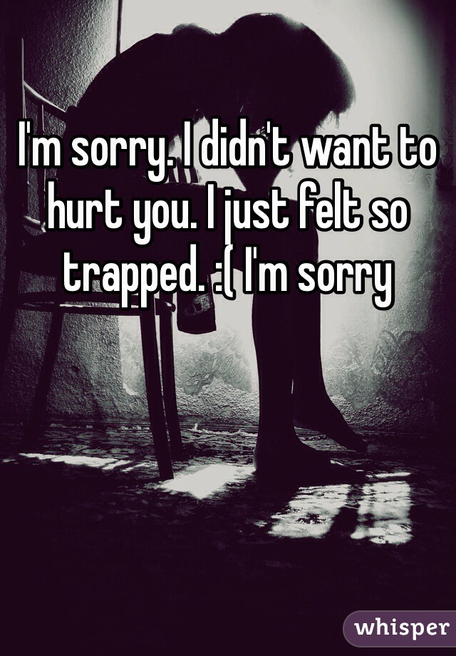 didn t want to hurt you