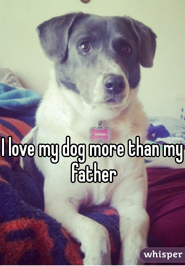 I love my dog more than my father