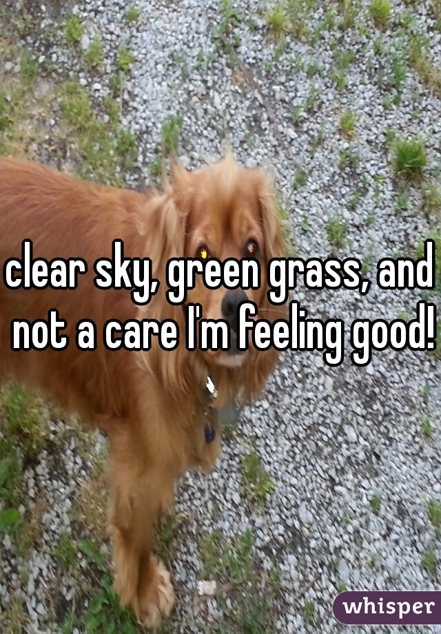 clear sky, green grass, and not a care I'm feeling good!