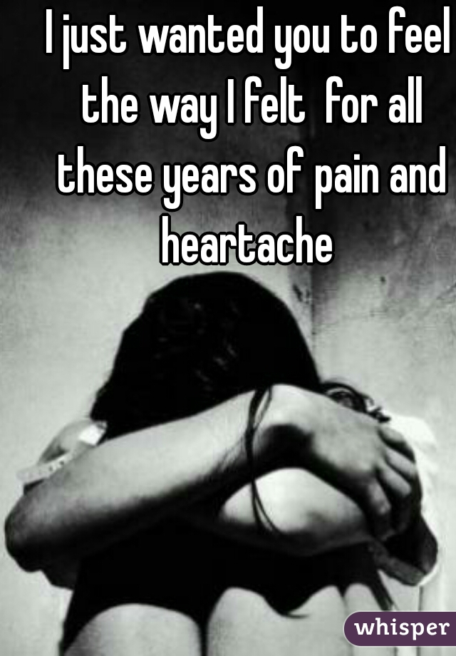 I just wanted you to feel the way I felt  for all these years of pain and heartache