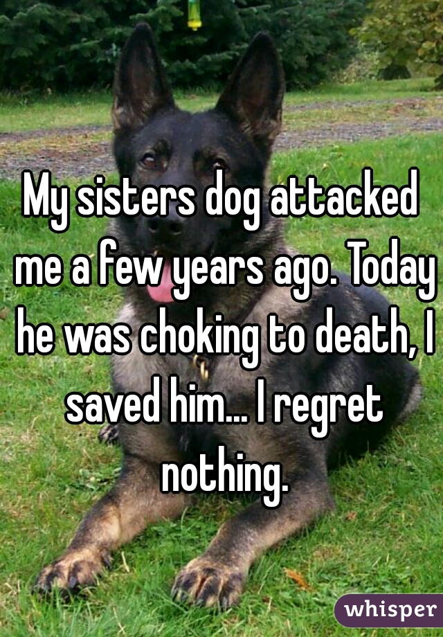 My sisters dog attacked me a few years ago. Today he was choking to death, I saved him... I regret nothing.