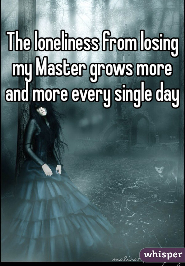The loneliness from losing my Master grows more and more every single day
