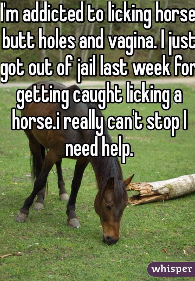 I'm addicted to licking horse butt holes and vagina. I just got out of jail last week for getting caught licking a horse.i really can't stop I need help.