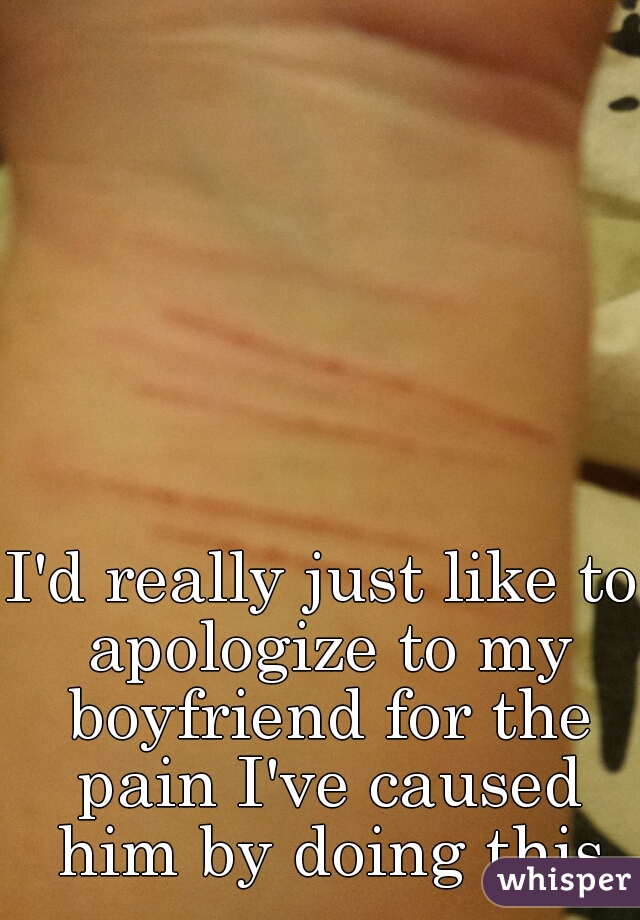 I'd really just like to apologize to my boyfriend for the pain I've caused him by doing this