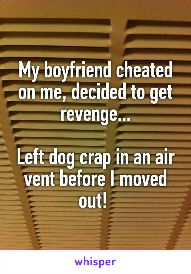 My boyfriend cheated on me, decided to get revenge...  Left dog crap in an air vent before I moved out!