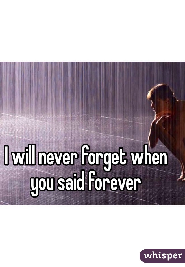 I will never forget when you said forever