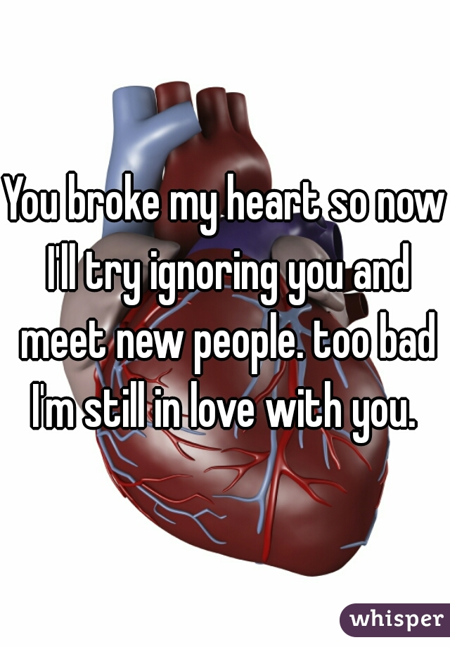 You broke my heart so now I'll try ignoring you and meet new people. too bad I'm still in love with you.