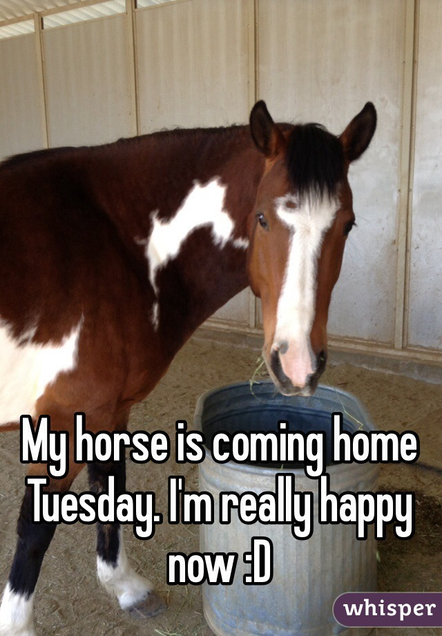 My horse is coming home Tuesday. I'm really happy now :D