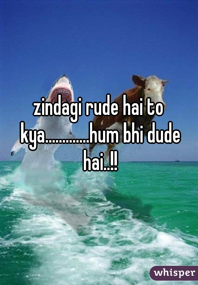 zindagi rude hai to kya.............hum bhi dude hai..!!