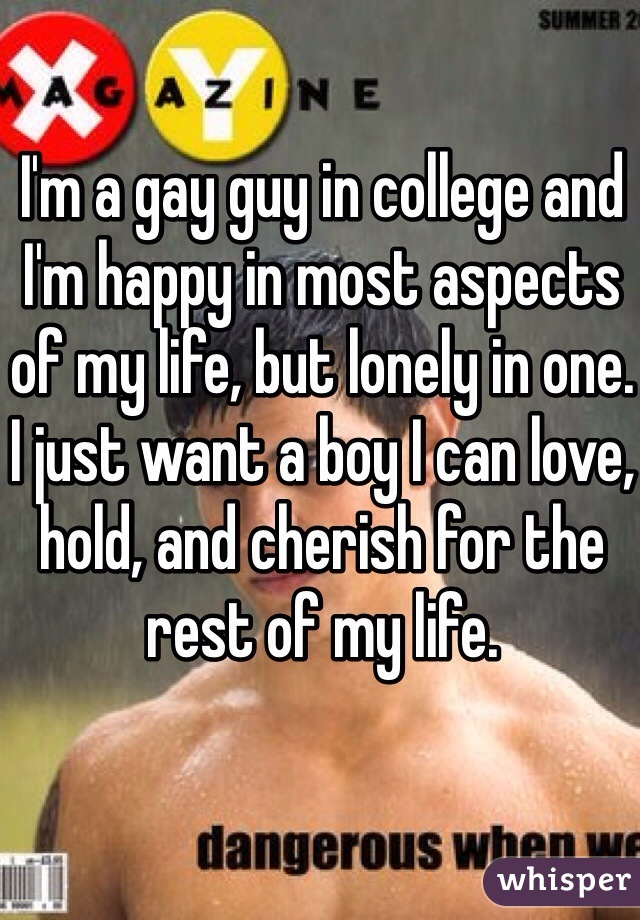 I'm a gay guy in college and I'm happy in most aspects of my life, but lonely in one. I just want a boy I can love, hold, and cherish for the rest of my life.