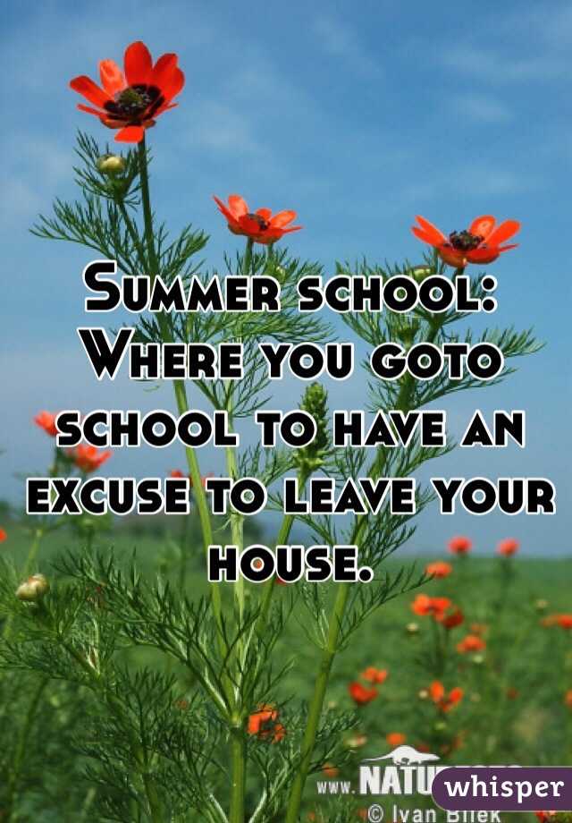 Summer school: Where you goto school to have an excuse to leave your house.