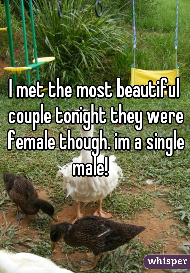 I met the most beautiful couple tonight they were female though. im a single male!