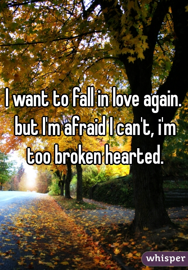 I want to fall in love again. but I'm afraid I can't, i'm too broken hearted.