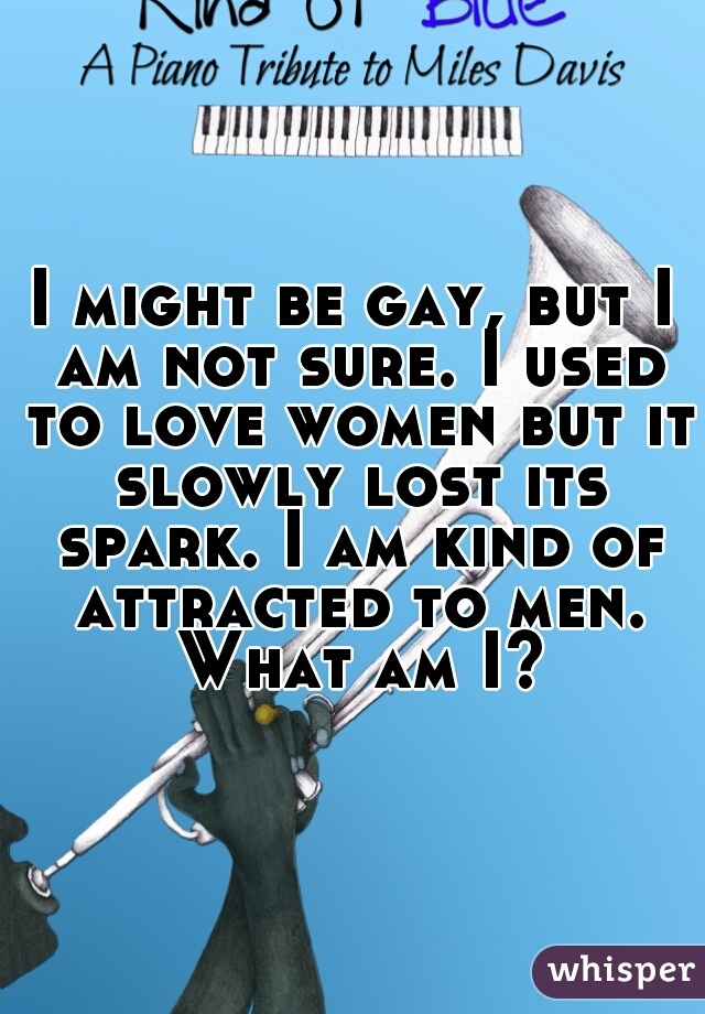 I might be gay, but I am not sure. I used to love women but it slowly lost its spark. I am kind of attracted to men. What am I?