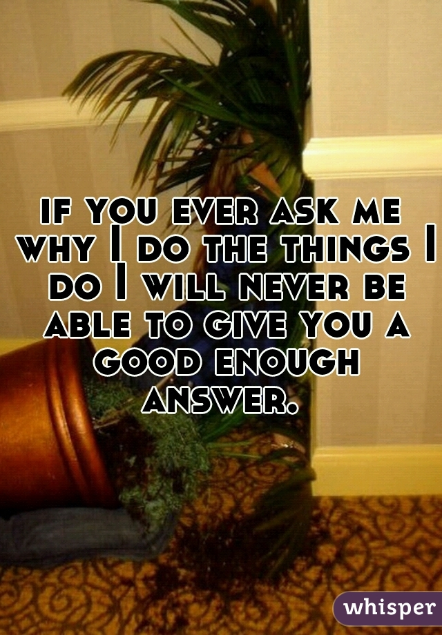 if you ever ask me why I do the things I do I will never be able to give you a good enough answer.