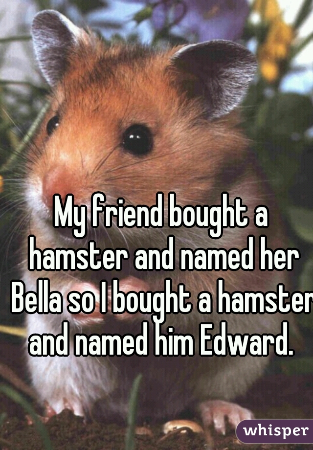 My friend bought a hamster and named her Bella so I bought a hamster and named him Edward.