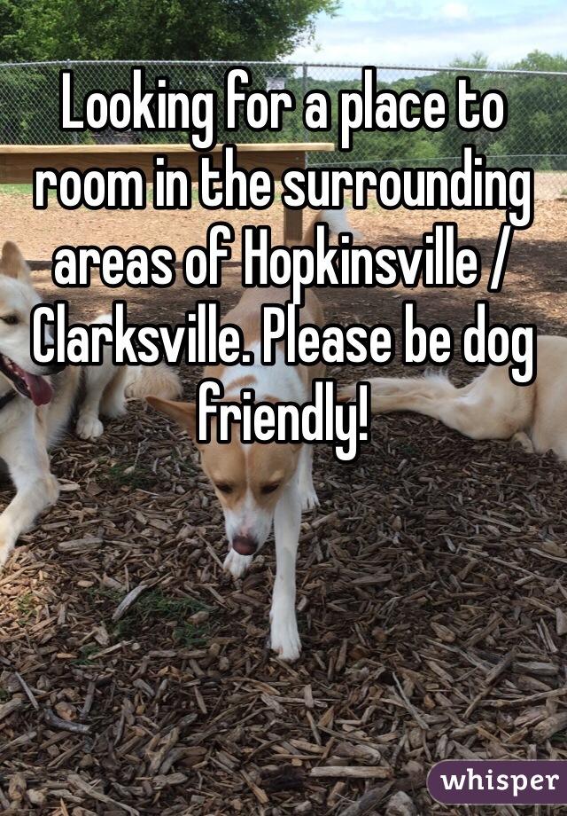 Looking for a place to room in the surrounding areas of Hopkinsville / Clarksville. Please be dog friendly!