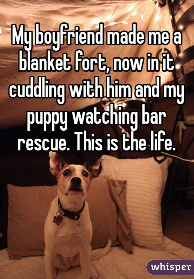 My boyfriend made me a blanket fort, now in it cuddling with him and my puppy watching bar rescue. This is the life.