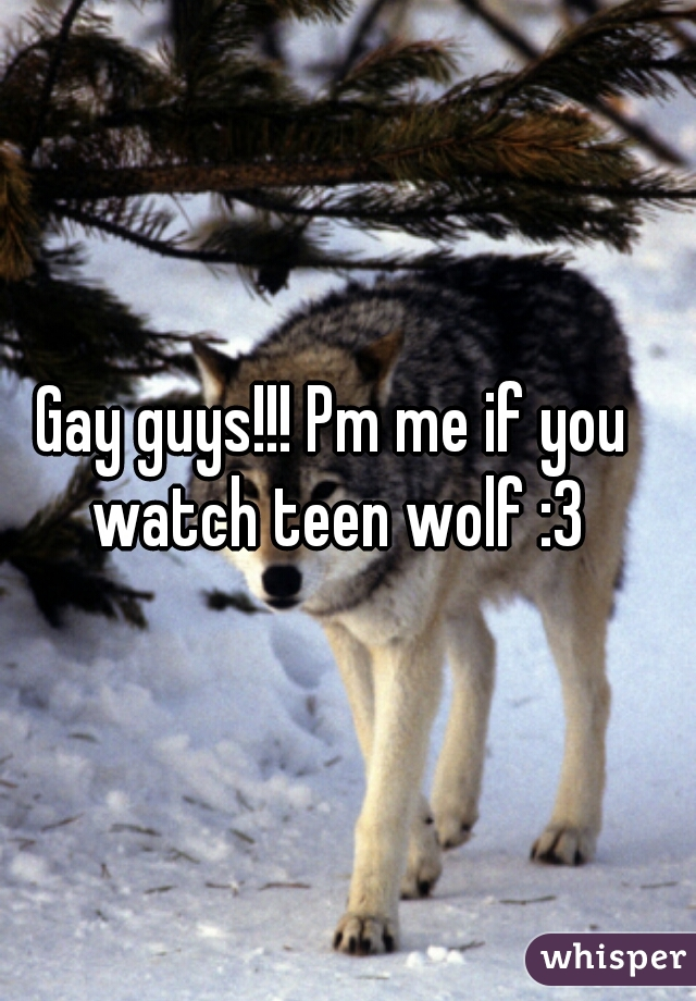 Gay guys!!! Pm me if you watch teen wolf :3