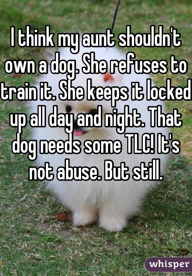 I think my aunt shouldn't own a dog. She refuses to train it. She keeps it locked up all day and night. That dog needs some TLC! It's not abuse. But still.