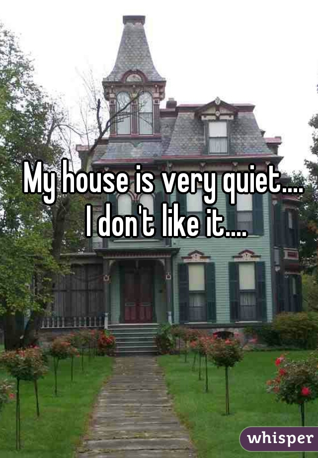 My house is very quiet....  I don't like it....