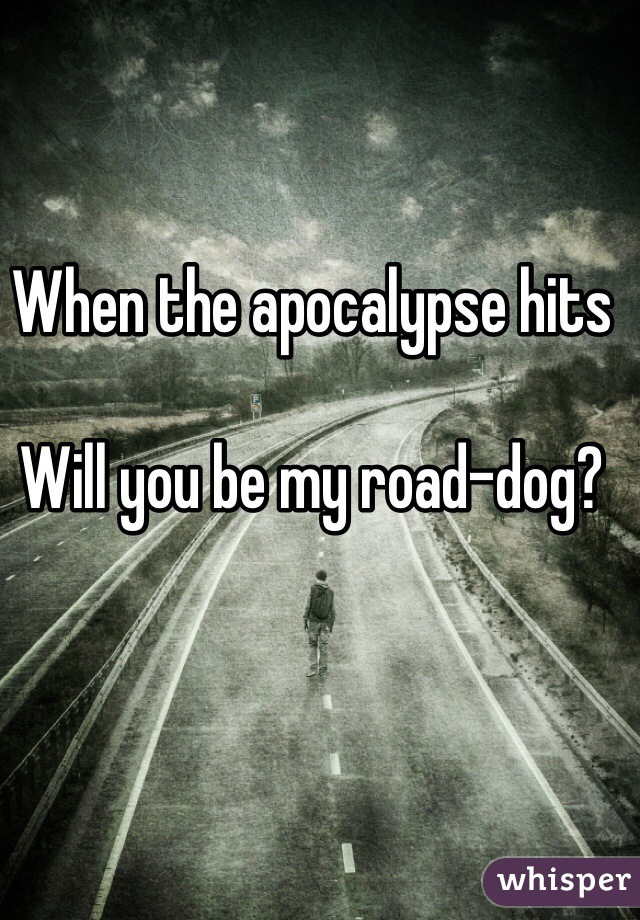 When the apocalypse hits  Will you be my road-dog?