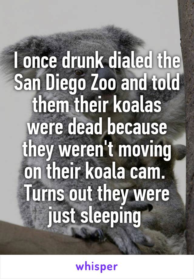 I once drunk dialed the San Diego Zoo and told them their koalas were dead because they weren't moving on their koala cam.  Turns out they were just sleeping