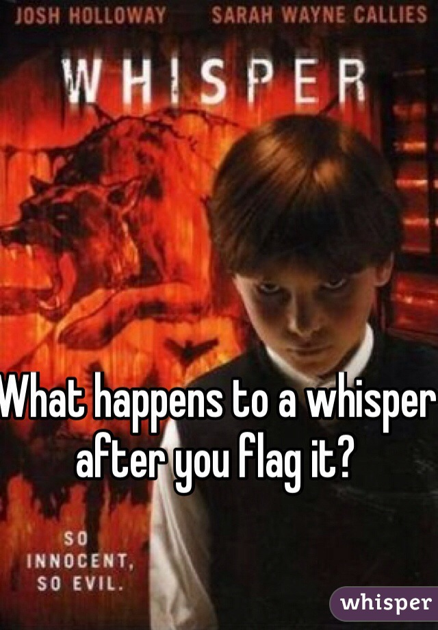 What happens to a whisper after you flag it?