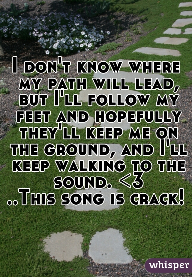 I don't know where my path will lead, but I'll follow my feet and hopefully they'll keep me on the ground, and I'll keep walking to the sound. <3 ..This song is crack!